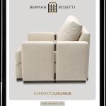 newsletter_berman-rosetti